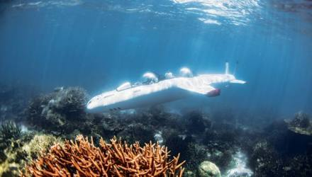 Laucala Super Falcon submersible Fiji | The View from Below | Paid Issue | Robb Report - The Global Luxury Source